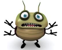scared-bug